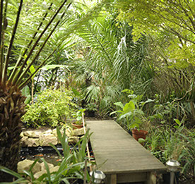 Tropical Garden Design in Wandsworth, London by Nigel Buckie from object Architecture