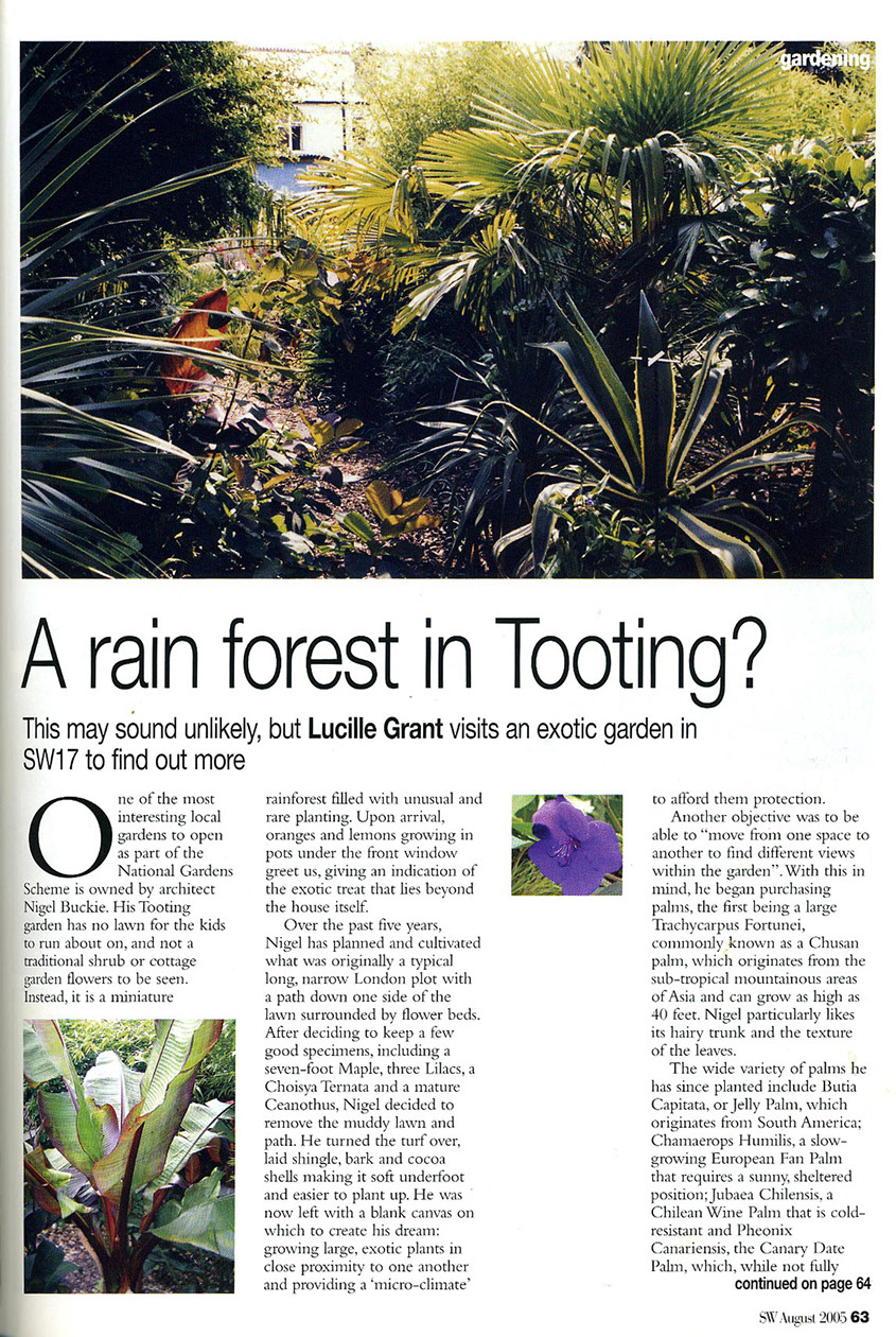 SW Magazine features Nigel Buckie from object Architecture as he shares his story on designing and planting a tropical garden in Tooting, London
